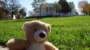 Teddy in DC - White House