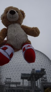 Teddy at Ile St-Helene