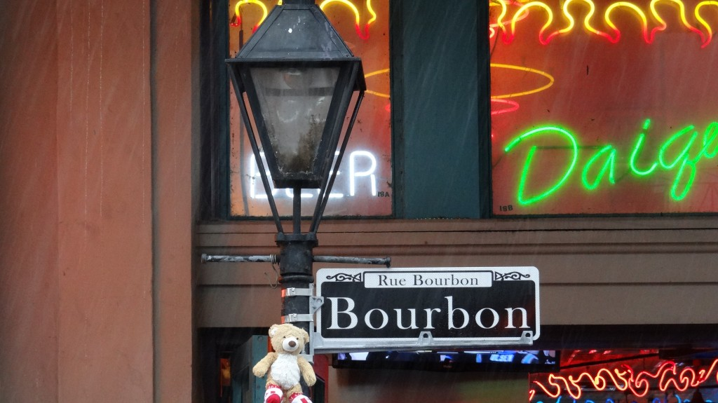 Teddy at Bourbon Street