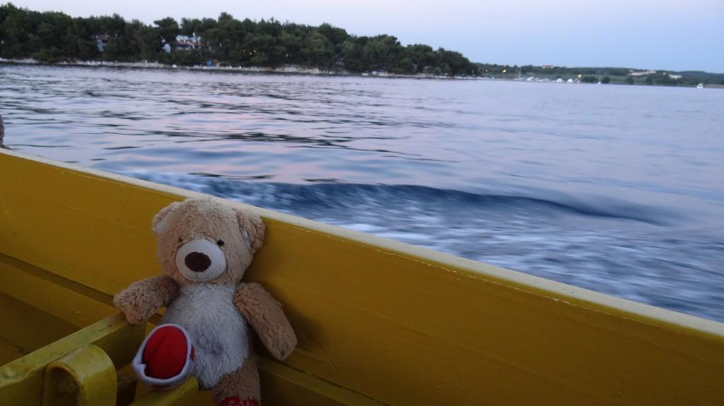 Teddy on Boat