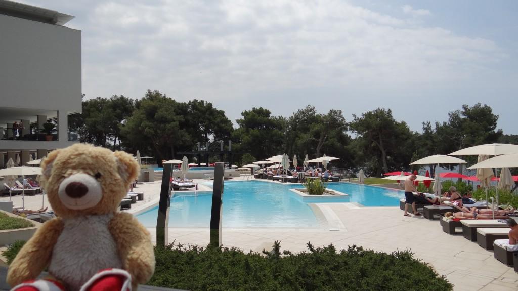 Teddy at Parentium Hotel